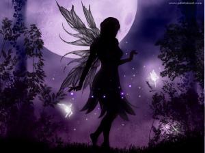 fairies8