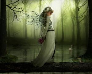fairies18